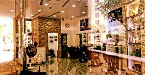 Black Stallion Salon
