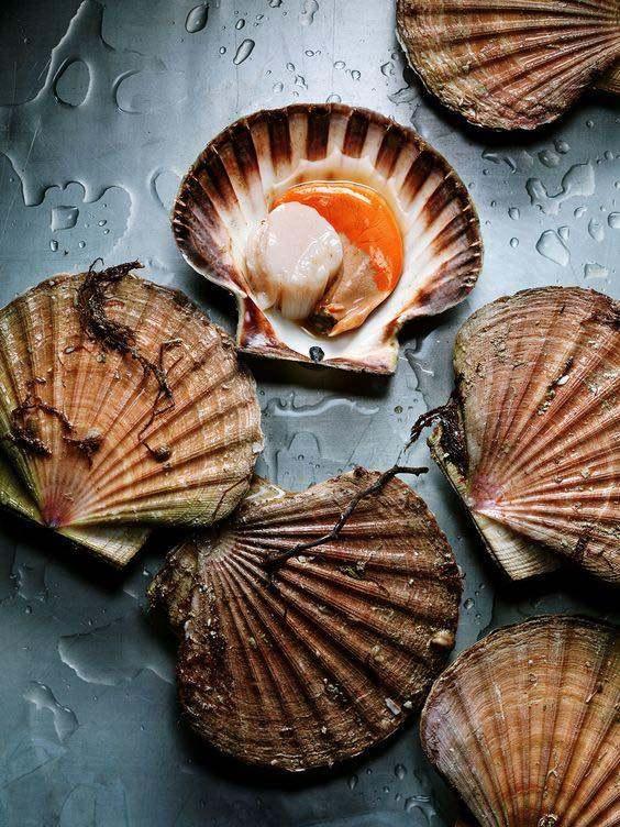 The Atlantic Food1